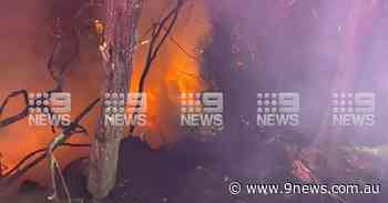 Truck bursts into flames after ploughing through barricade on Sydney motorway - 9News