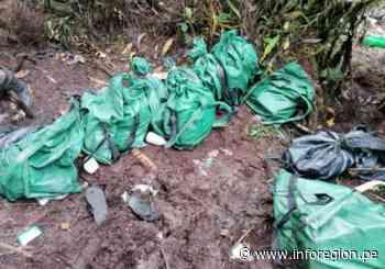Satipo: Hallan 13 costales con alcaloide de cocaína dejados por «mochileros» - INFOREGION