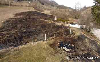 Wiesenbrand in Molln sorgt für Einsatz von fünf Feuerwehren   laumat at - laumat at