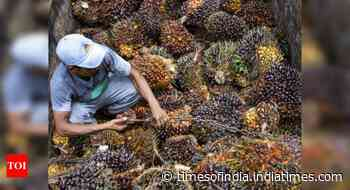 Palm oil imports rise 57% in March, says trade body