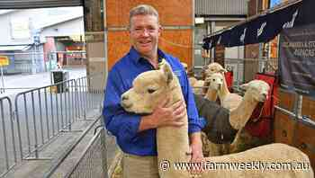 Co-ops helping to change the face of alpaca industry