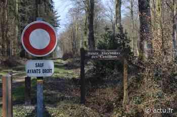 Communauté de communes Aumale Blangy-sur-Bresle : L'entretien de la forêt va coûter plus de 24 000 € par an - actu.fr