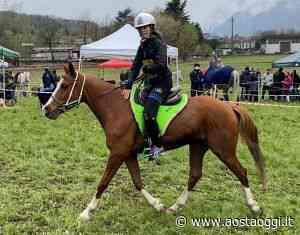 Equitazione, Lustrissy dodicesima a Darfo Boario Terme - Aosta Oggi