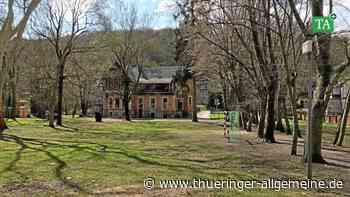 Villa Franz in Arnstadt: Schulgarten und Spielgarten sollen entstehen - Thüringer Allgemeine