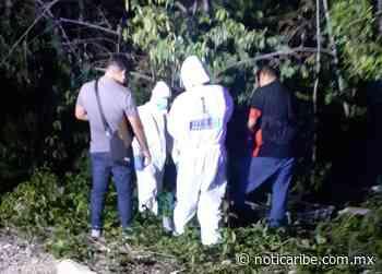 Hallan cuerpo sin vida en Playa del Carmen - Noticaribe
