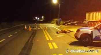 Cavalo solto na pista mata motociclista em rodovia de Mimoso do Sul » Jornal Dia a Dia - Notícias do Espirito Santo e do Brasil - Dia a Dia Espírito Santo
