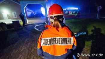 Rendsburg-Eckernförde: Junge Liberale und Junge Union wollen Ehrenamt im Kreis attraktiver machen | shz.de - shz.de