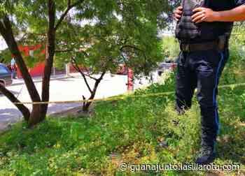 """Por pedir """"moche"""" arrestan a 5 policías en León; operaron en El Coecillo - La Silla Rota"""