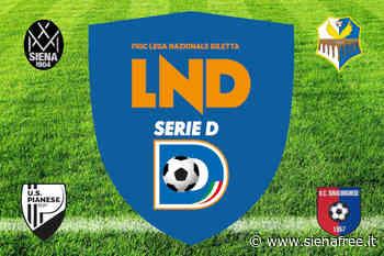 Calcio Serie D - Siena e Pianese avanti tutta; Badesse fermato sul pari e allenatore esonerato; Sinalunghese ancora sconfitta - SienaFree.it