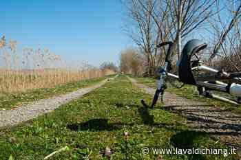 Il Sentiero della Bonifica - Tappa 2: dal confine Siena-Perugia al Lago di Montepulciano - La Valdichiana