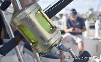 Atrae el 'Marina Puerto Escondido Fishing Tournament' - Big Fish