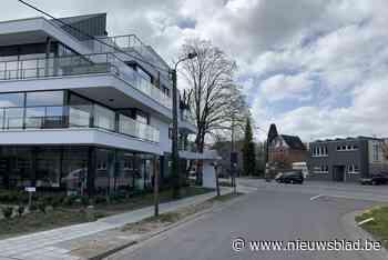 Ruimte, vrijwilligers en vergunningen essentieel voor buurtcomposteren - Het Nieuwsblad