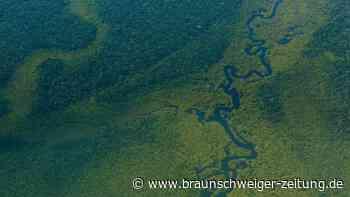 Studie: Nur kleiner Teil weltweiter Lebensräume ökologisch intakt