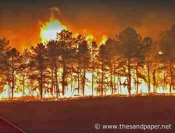 Forest Policies Pose Risk of Wildfires in New Jersey - The SandPaper