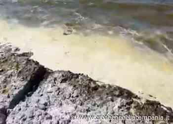 Continua schiuma bianca nelle acque del Lago Patria - Cronache della Campania