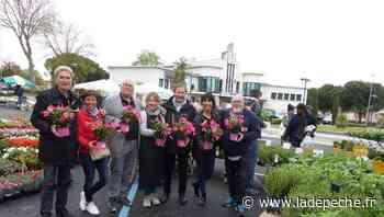 Quint-Fonsegrives. Dimanche, 18e marché aux fleurs - ladepeche.fr