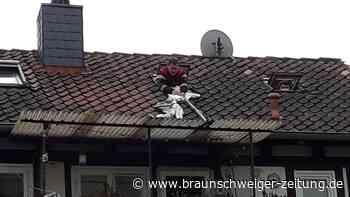 Wolfenbütteler Feuerwehr rettet Katze von Dach