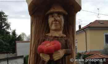 Olgiate Olona, dai cedri abbattutti ecco Pinocchio - La Prealpina