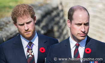 Princes William and Harry to walk alongside cousin Peter Phillips at funeral procession