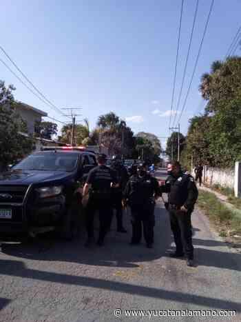 Policías solo 'se quedan viendo' pleito entre vándalos, en Ticul - Yucatán a la mano