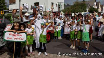 Große Veranstaltungen in Diez und Aar-Einrich: Traditionsfeste stehen auf wackligen Beinen - Rhein-Zeitung