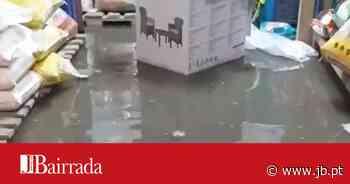 Obras não evitaram nova inundação em Sangalhos – Jornal da Bairrada - Jornal da Bairrada