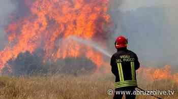 Rocca San Giovanni. Incendio dietro lo Zoo Safari Park - AbruzzoLive.tv - AbruzzoLive.tv