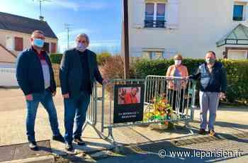 Saint-Thibault-des-Vignes : une marche blanche en mémoire d'Iderlindo - Le Parisien