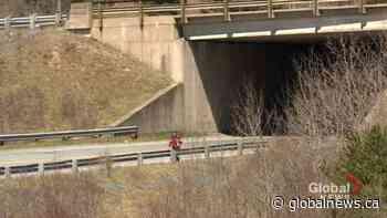 Pedestrian bridge in Lower Sackville is one step closer to reality   Watch News Videos Online - Globalnews.ca