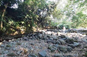 Pobladores de Rancho Viejo reportan bajos niveles de agua en el río Pixquiac - Libertadbajopalabra.com