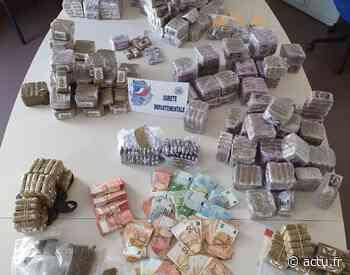 Trafic de drogue à Noisiel et Meaux : un réseau démantelé, 90kg de cannabis saisis - actu.fr