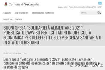 Buoni spesa per i cittadini di Tolmezzo, Amaro, Cavazzo Carnico e Verzegnis - Udine20 2020