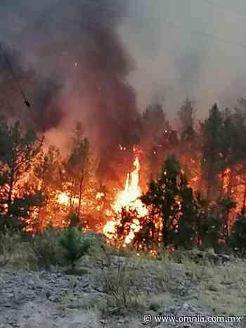 Incontrolable incendio forestal en San Juanito - Omnia