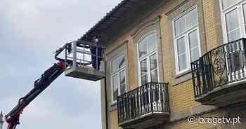 PAN contra instalação de espigões dissuasores para pombos em Vizela - Braga TV