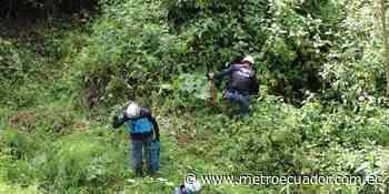 Reanudan búsqueda de Juliana Campoverde en el norte de Quito - Metro Ecuador
