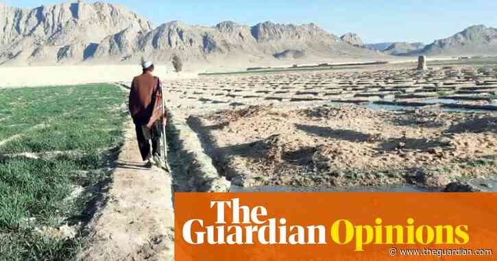 What did 20 years of western intervention in Afghanistan achieve? Ruination | Simon Jenkins