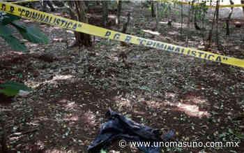 Hallan en fosa clandestina 10 cuerpos putrefactos en Lagos de Moreno - UnomásUno