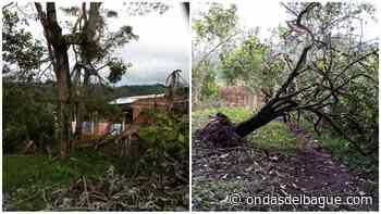 Serias afectaciones se registraron Armero Guayabal a causa de las lluvias de las últimas horas - Emisora Ondas de Ibagué, 1470 AM