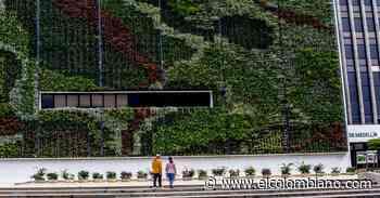 Un jardín vertical, nueva zona verde del centro administrativo La Alpujarra - El Colombiano