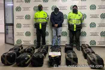 Incautan millonario cargamento de marihuana en Funza, Cundinamarca - Noticias Día a Día