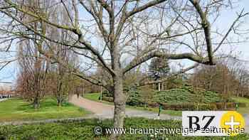 Garten-Professor: Braunschweigs Parks und Wallring bewahren