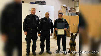 Two New K9 Teams Graduate From Pittsburgh Police K9 School
