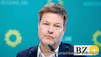 K-Frage: Robert Habeck im Porträt: So tickt der Grünen-Chef