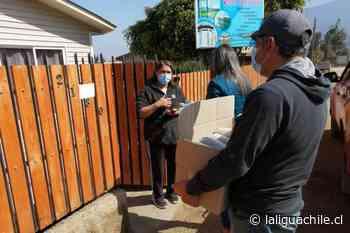 Tarea cumplida: juntas de vecinos de Valle Hermoso reciben porotos de la Siembra Popular - El Diario de La Ligua