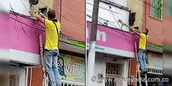 En video: habitantes de Venadillo hicieron de todo para rescatar una zarigüeya - El Nuevo Dia (Colombia)