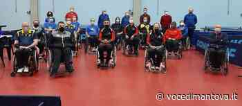 Tennis tavolo paralimpico - Castel Goffredo imbattuto nel concentramento al PalaMazzi   Voce Di Mantova - La Voce di Mantova