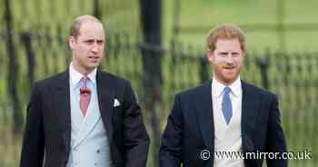 Harry and William will 'behave' at Prince Philip's funeral, says royal expert