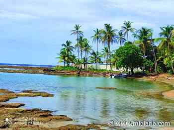 NacionalesHace 21 días Dos ahogados. Uno en Penonomé y otro en Palenque - Mi Diario Panamá