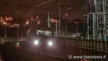 Spotorno, due caprioli investiti dal treno regionale per Ventimiglia - Il Secolo XIX