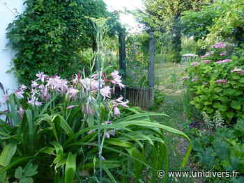 Visite libre du jardin de Monique Jardin de Monique Petit samedi 5 juin 2021 - Unidivers